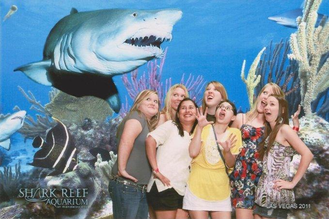 Las vegas loan sharks