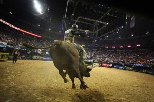 Professional bull riders, PBR Las Vegas
